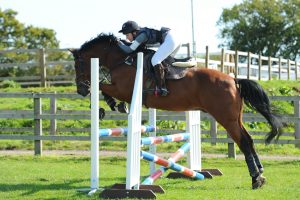 Show-jumping at Rein and Shine