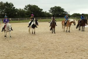 riding lessons at rein and shine