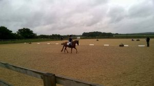 Dressage at rein and shine