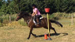 Hoof Club mounted games at rein and shine