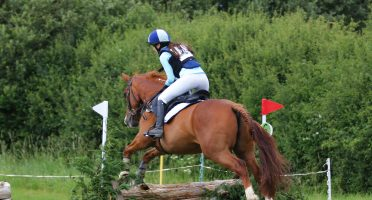 Hunter Trials at Rein and Shine Wiltshire
