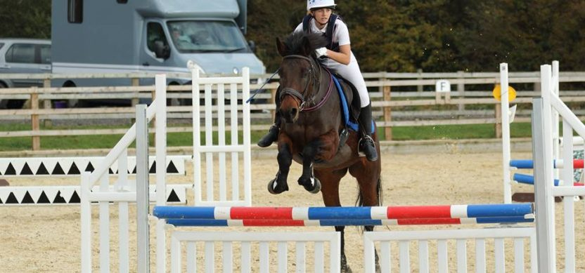 show jumping courses at rein and shine