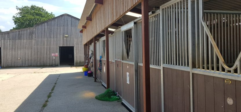 rein and shine livery yard in wiltshire