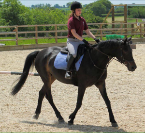 wiltshire horse riding lessons