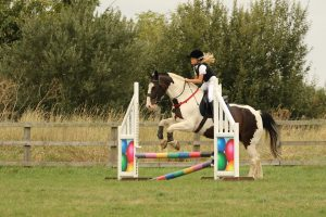 clear round jumping of grass at rein and shine Braydon