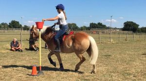 rein and shine mounted games horse riding