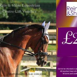 Rein and Shine horsey gift vouchers