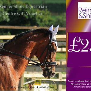 horse riding lessons voucher